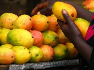 How This Strange African Fruit Is Making Americans Skinny Shy Magazine Shy Magazine