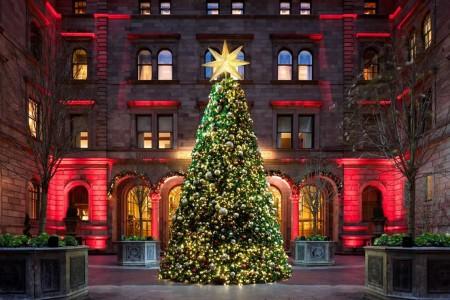 christmas_trees_new_york_palace_1